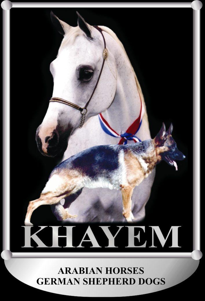 Khayem German Shepherds